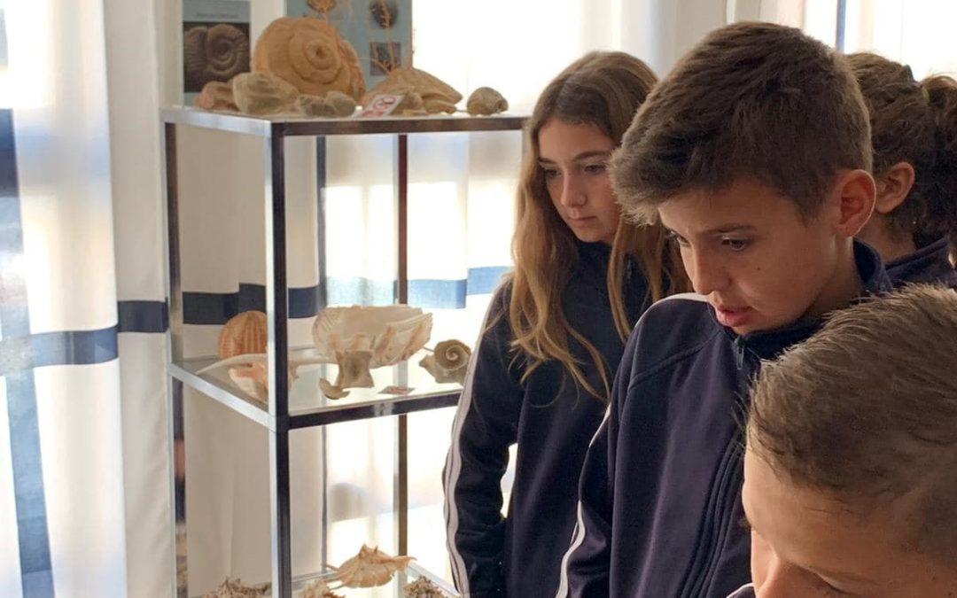 Visita al Museo del Mar