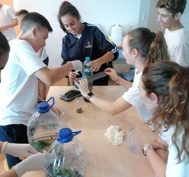 Aquí nuestro proyecto «Ecosistema en una Botella».