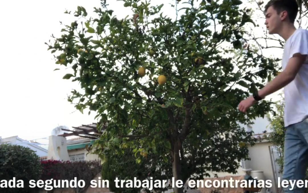 Homenaje al poeta y dramaturgo de Orihuela Miguel Hernández.